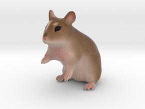 Custom Hamster Figurine - Filly in Full Color Sandstone