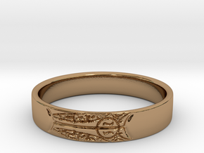 King's Ring in Polished Brass: 8.5 / 58