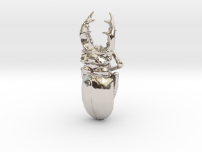 Large Silver Stag Beetle in Rhodium Plated Brass