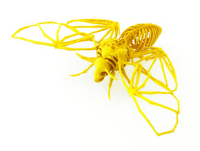 Death's Head Hawkmoth Skeleton in Yellow Strong & Flexible Polished