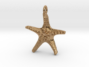 Starfish Pendant 1 - small in Polished Brass