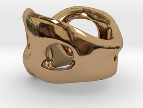 s3r033s7 GenusReticulum in Polished Brass