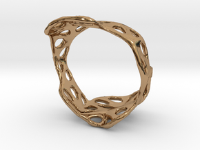 s3r020s8 GenusReticulum  in Polished Brass