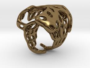 s4r019s7 GenusReticulum  in Polished Bronze