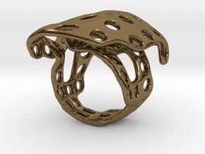 s4r014s6 GenusReticulum  in Polished Bronze