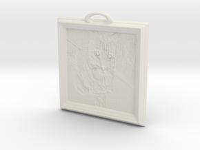 ShackletonPane in White Natural Versatile Plastic