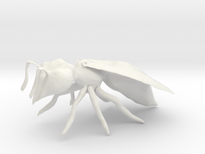 Bee in White Natural Versatile Plastic
