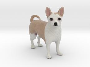 Custom Dog Figurine - Tarka in Full Color Sandstone