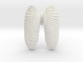 Small Angelwings Shell Pendant in White Natural Versatile Plastic