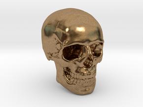 1/24  Human Skull Crane Schädel че́реп in Natural Brass