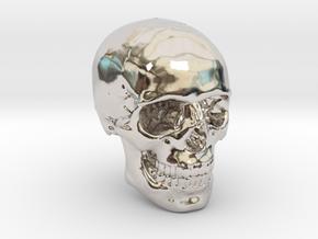 1/24  Human Skull Crane Schädel че́реп in Platinum