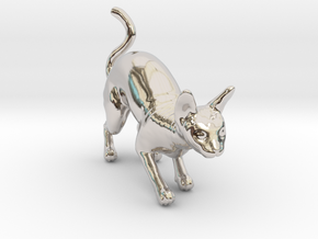 Stalking Blue Sphynx in Rhodium Plated Brass