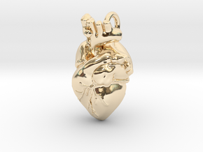 Anatomical Heart Pendant in 14k Gold Plated Brass