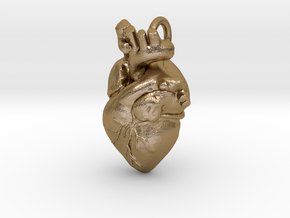 Anatomical Heart Pendant in Polished Gold Steel