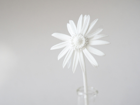 Picked Daisy 1 in White Natural Versatile Plastic
