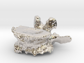 ICS1992SR50 Lumbar Vertebra in Platinum