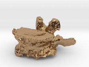ICS1992SR50 Lumbar Vertebra in Polished Brass