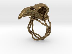 Raven skull ring  in Natural Bronze