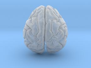 Orangutan Brain in Smooth Fine Detail Plastic