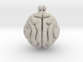 Cat Brain in Natural Sandstone