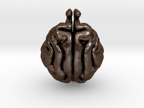 Cat Brain in Polished Bronze Steel