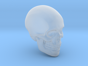 Skull Paperweight in Smooth Fine Detail Plastic