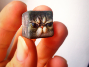 Grumpy Cat Cube / Animal Cubes in Full Color Sandstone