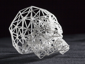 Wireframe Skull in White Natural Versatile Plastic