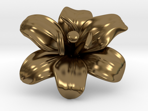 Lily Flower 1 - M in Polished Bronze
