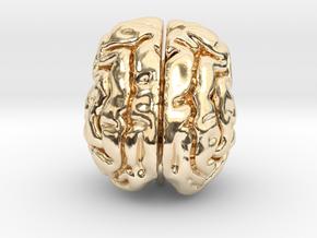 Cheetah brain in 14k Gold Plated Brass