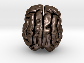 Cheetah brain in Polished Bronze Steel