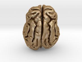 Leopard brain in Matte Gold Steel