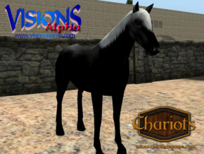 Horse Ultra Black Fancy in Full Color Sandstone