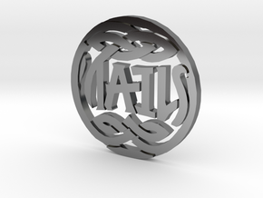 Heads and Tails Ambigram Coin in Fine Detail Polished Silver