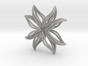 sWINGS W06 in Aluminum