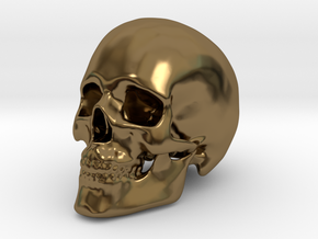 Human Skull in Polished Bronze