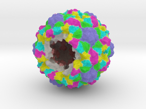 Bacteriophage Procapsid (Open) (1CD3) in Full Color Sandstone