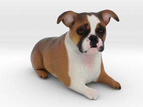Custom Dog Figurine - Lola in Full Color Sandstone