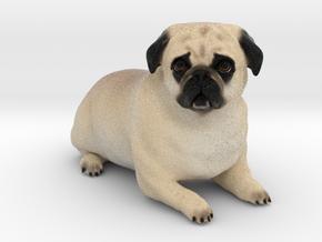 Custom Dog Figurine - Duke in Full Color Sandstone