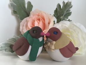 Love Birds in Full Color Sandstone
