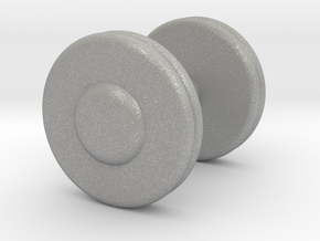 a Mini Troy Barbell Fixed Pro-Style Dumbbells in Aluminum