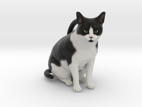 Custom Cat Figurine - Josie in Full Color Sandstone