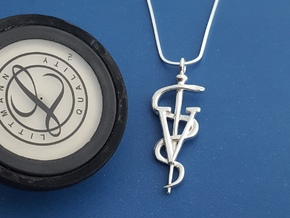 Rod Of Asclepius Veterinarian Pendant in Fine Detail Polished Silver