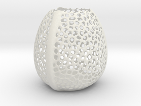 Voronoi vase in White Natural Versatile Plastic