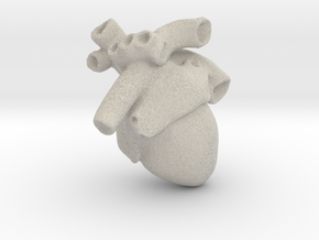 Anatomical Heart Pendant in Natural Sandstone
