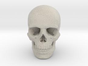 33mm 1.3in Human Skull (23mm/.9in wide) in Sandstone