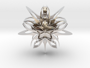 Devious Star Pendant v1 in Rhodium Plated Brass