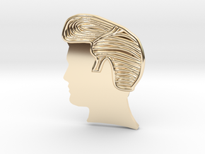 RockStar Hairstyle- Pendant in 14k Gold Plated Brass
