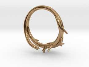 Thorn Ring in Polished Brass: 5 / 49