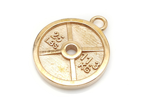 25 Lb Weight Plate Charm / Pendant in Polished Bronze